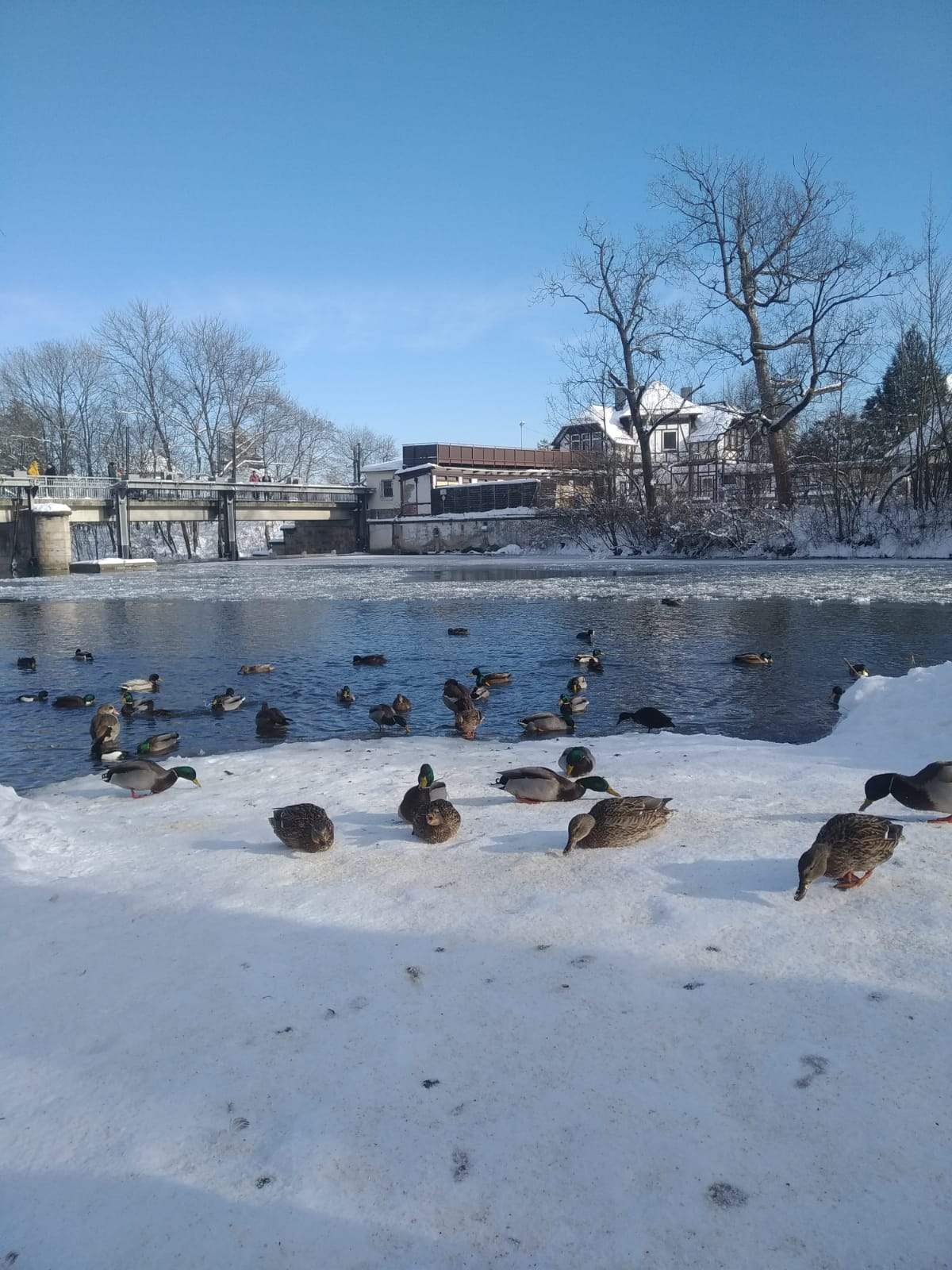 Einblicke in den Winterlockdown